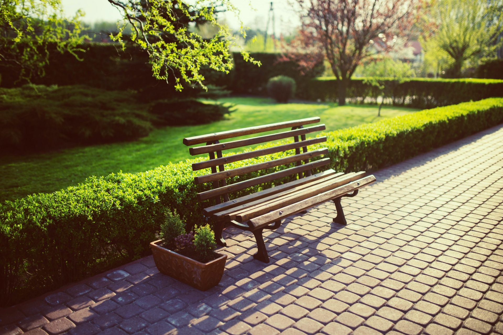 a bench beside a garden