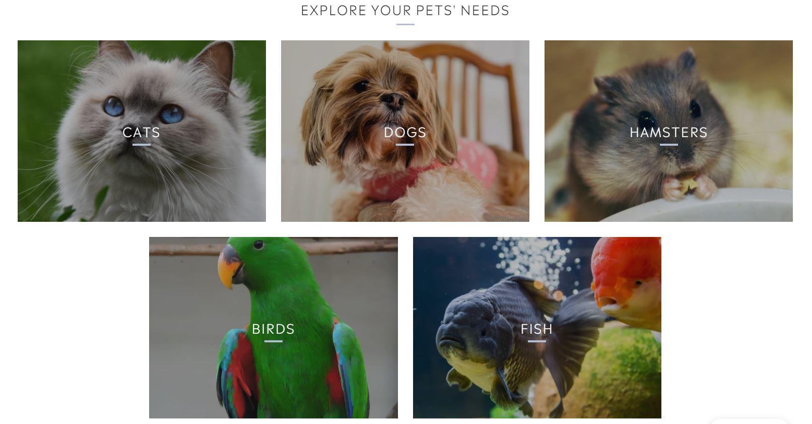 Enrich Your Pets animals